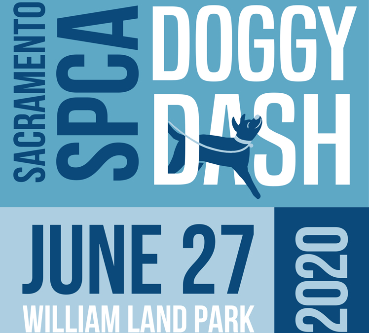 27th Annual Sacramento SPCA Doggy Dash