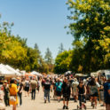 Sacramento Antique Faire - 3rd Sun for month of October only